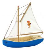 sailing boat for motor